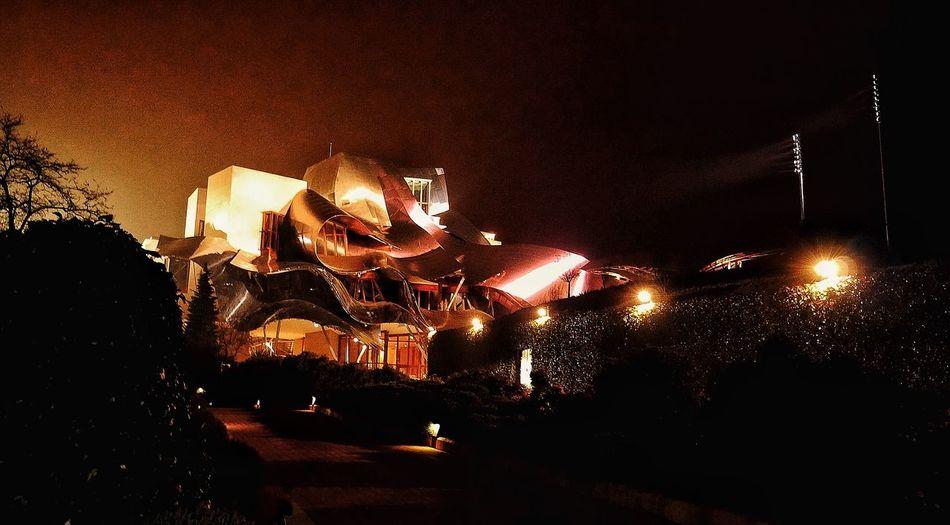 The Architect - 2015 EyeEm Awards The Moment - 2015 EyeEm Awards Bodegas Marques De Riscal La Rioja Enjoying Life Night Lights Somosfelices Frank Gehry