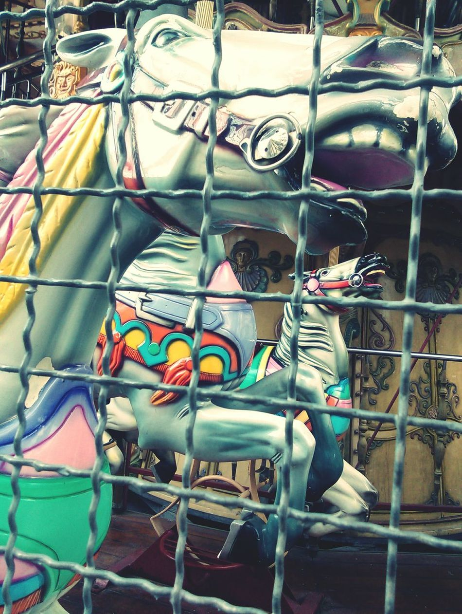 In jail. Horses Carousel Jail Photooftheday
