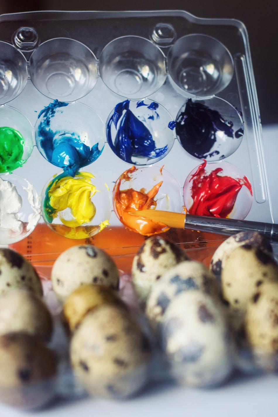 Still Life Quail Eggs Easter Food Close-up Art Decoration Selebraiting Creative Paint Colorful