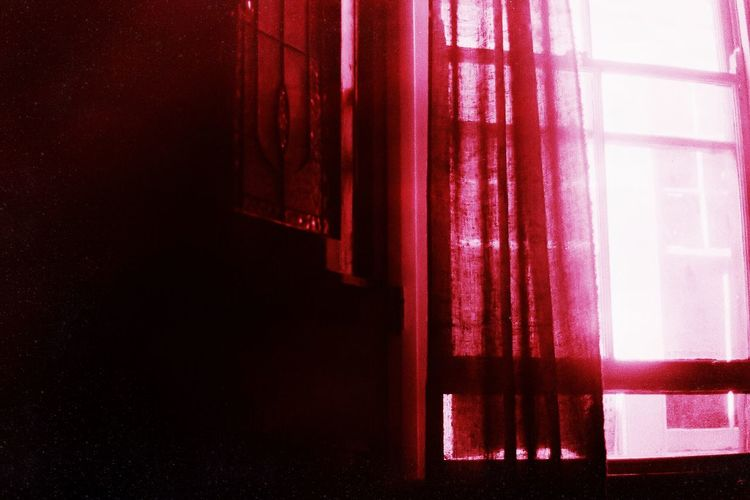 Millennial Pink Curtain Indoors  Red Window No People Drapes  Close-up Day Pink Color 1979