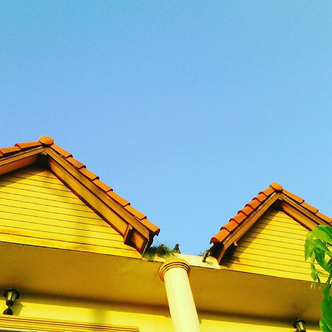 roof, architecture, yellow, built structure, house, building exterior, low angle view, blue, outdoors, clear sky, day, sky, no people, multi colored