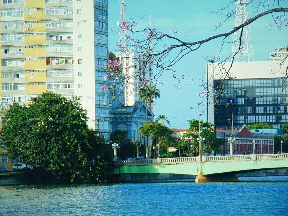 Amo muito esse lugar Pernambuco Recife/PE First Eyeem Photo