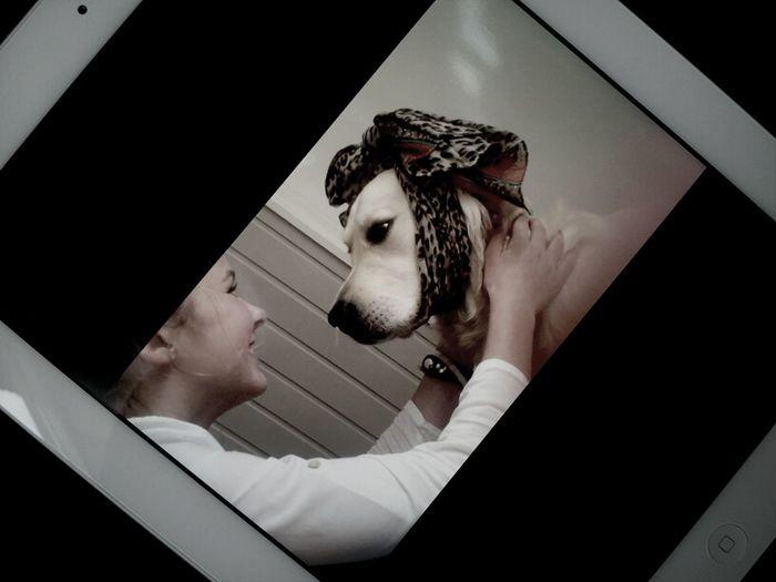 Love My Dogg .