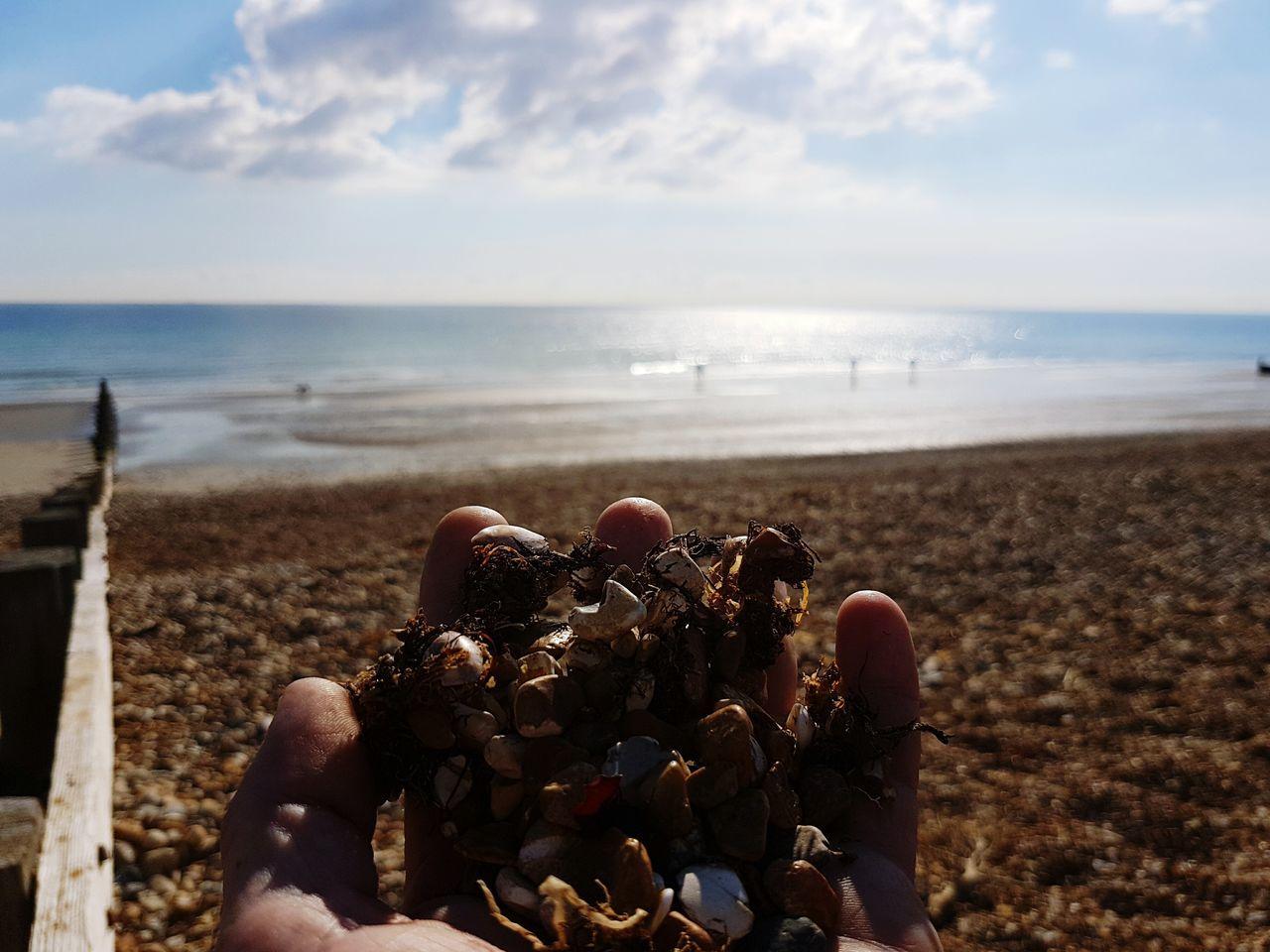 Sea Sky Horizon Over Water Beach Nature Day Beauty In Nature Outdoors Kelp Seaweed Freshness My Hand