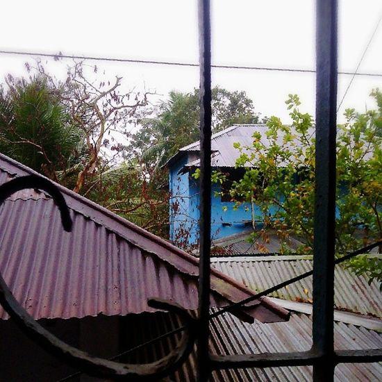 Rain rain go away, cause I wanna go outside! Village Rain Nature Barisal Bangladesh BeautifulBANGLADESH ... (: