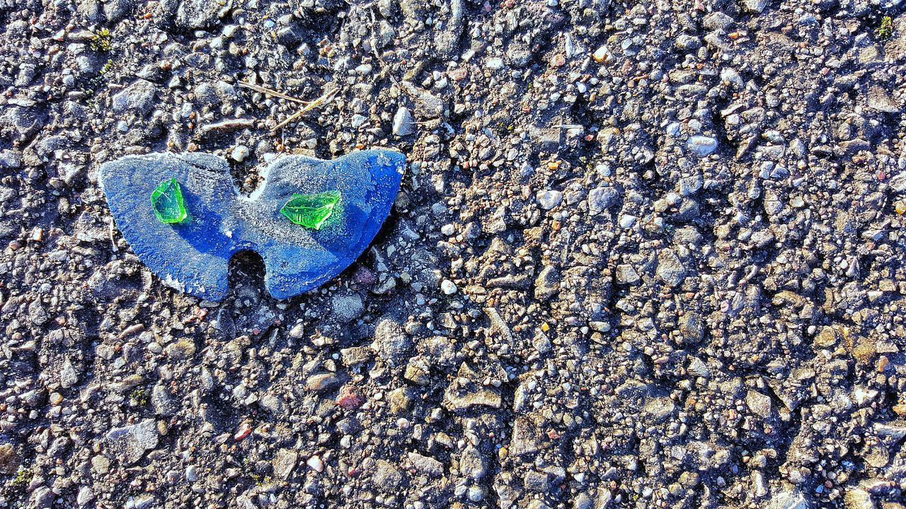 Blue High Angle View No People Close-up Day Beauty In Nature Nature Illuminated colorful eyes butterfly asphalt Glass green Shape abstract exploringExploring Style style
