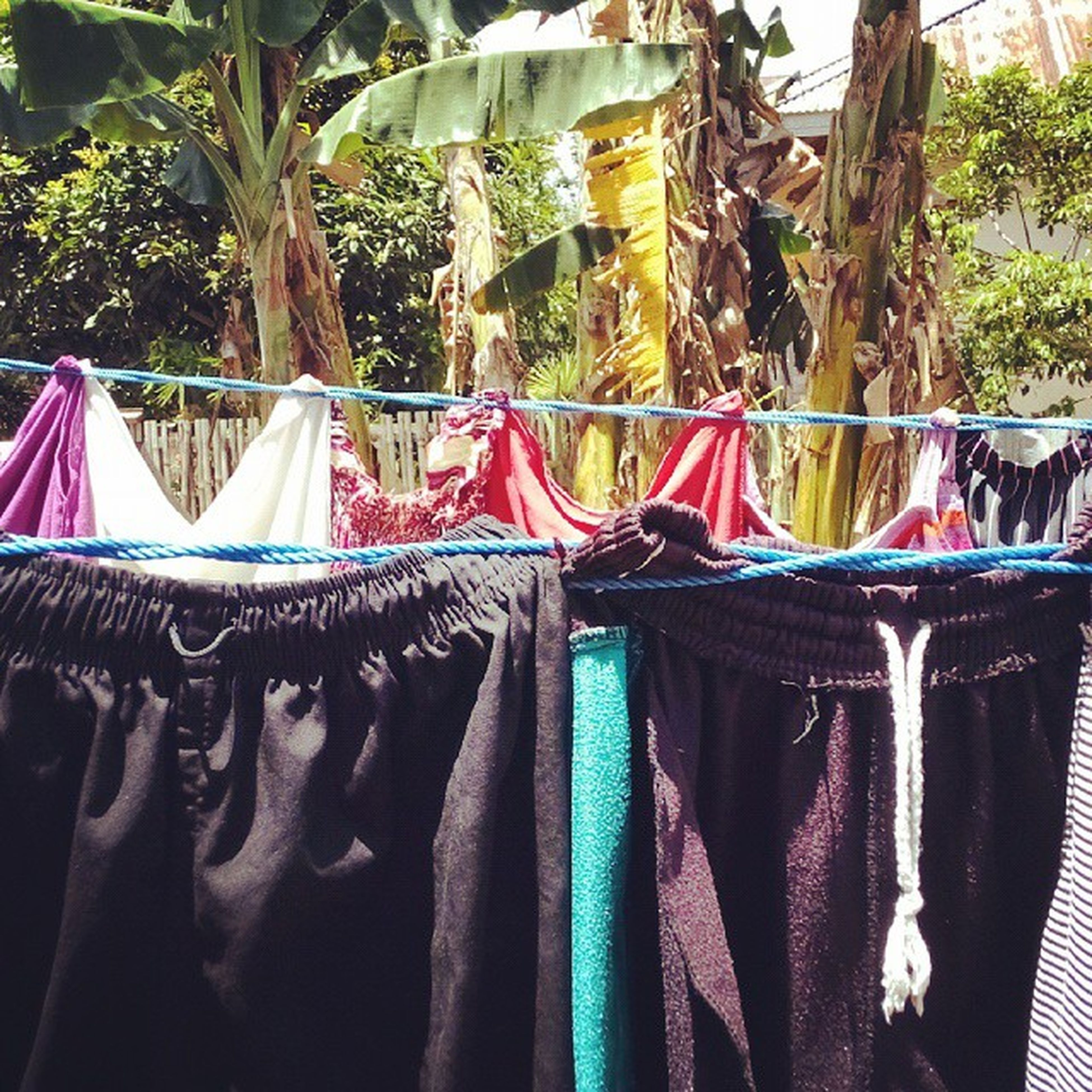 hanging, textile, in a row, fabric, multi colored, variation, side by side, clothing, for sale, large group of objects, clothesline, close-up, arrangement, drying, abundance, indoors, choice, no people, day, order