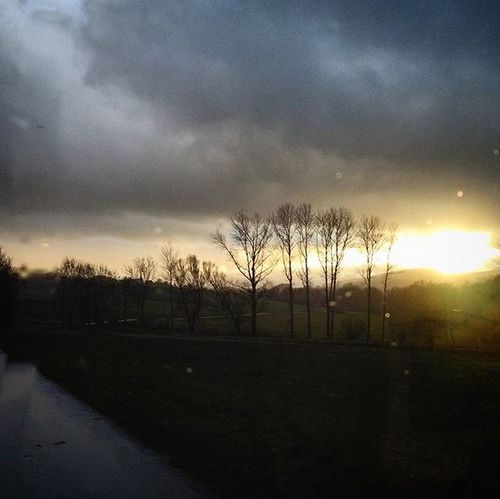 Sun Sunset Sungoesdown Photoarena_sunset Tree Trees Cloud Clouds Sky Heaven Twilight Landscape Landschaft Rain Rainy