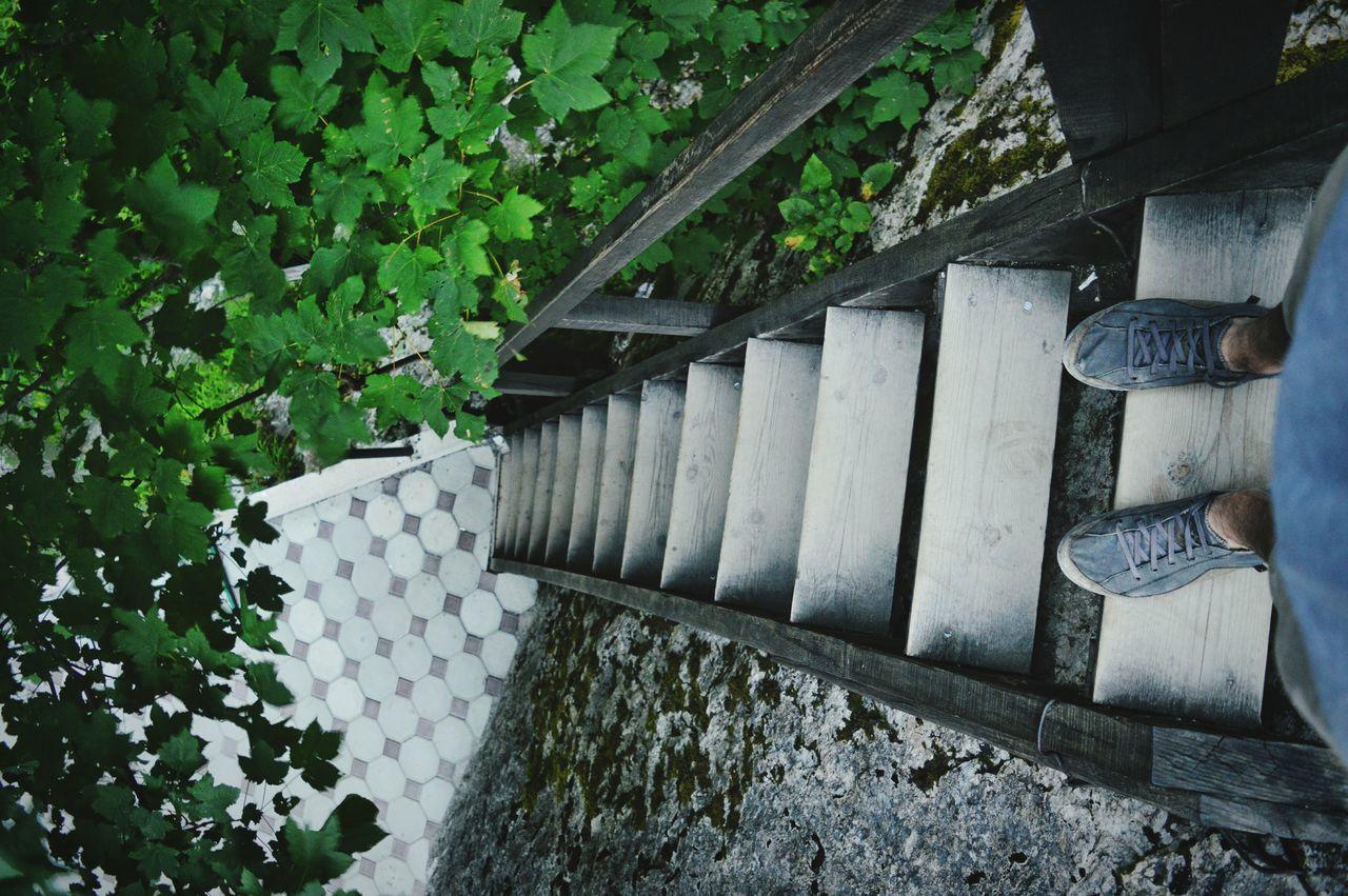 Holiday POV POV Stairways