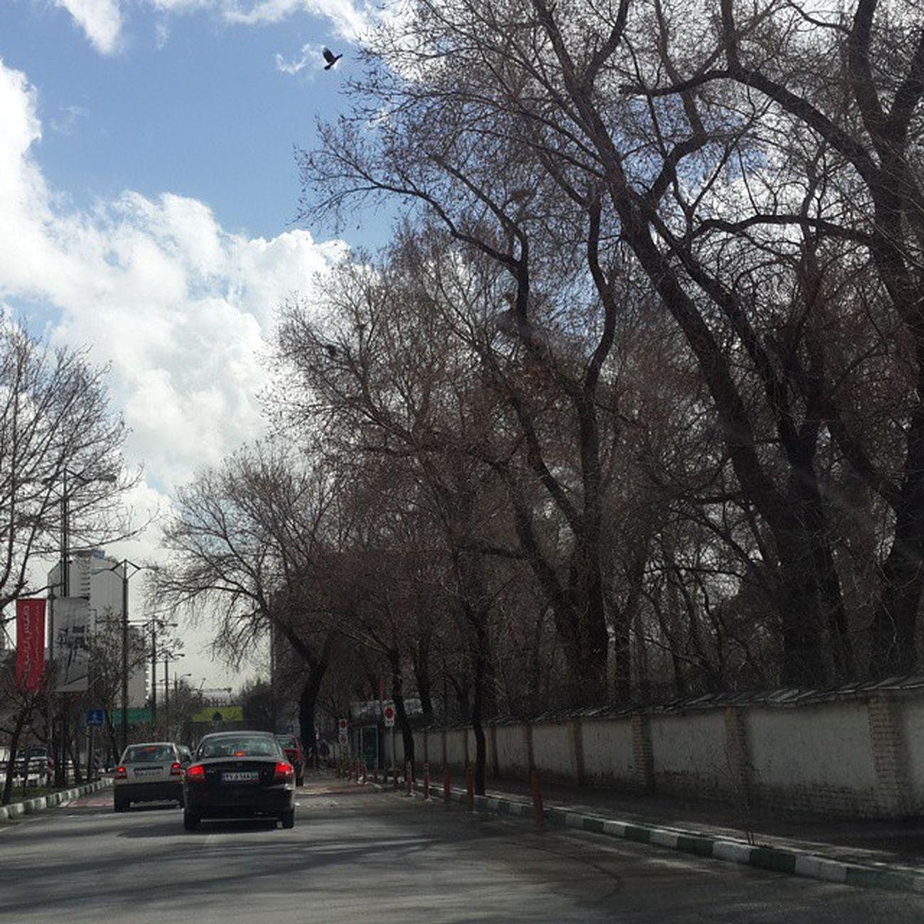 Tehran mention the beautiful Flyingbird on top...