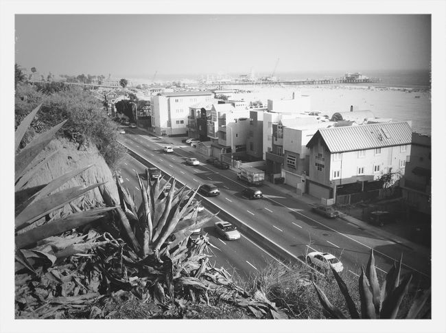 A view of the Santa Monica Pier
