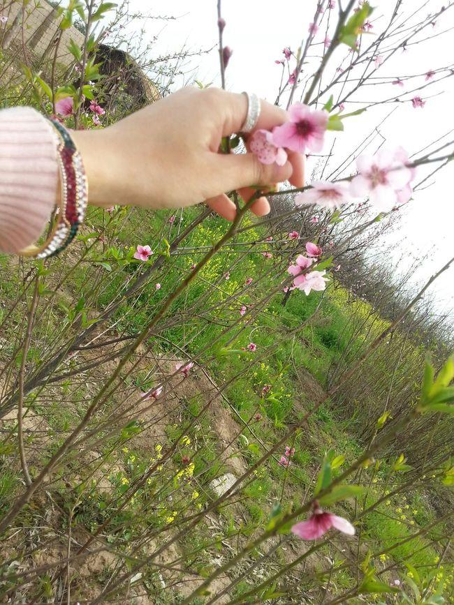 Kalakchi Taking Photos Relaxing That's Me Enjoying Life EyeEm Nature Lover Hello World Kindness Great Love ♥