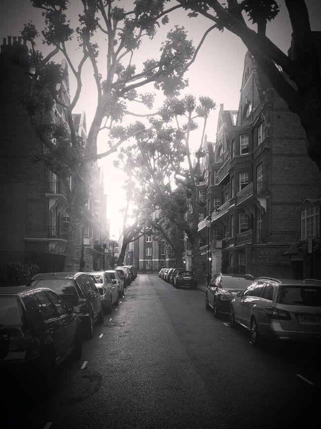 City Street Outdoors London London Streets EyeEm LOST IN London