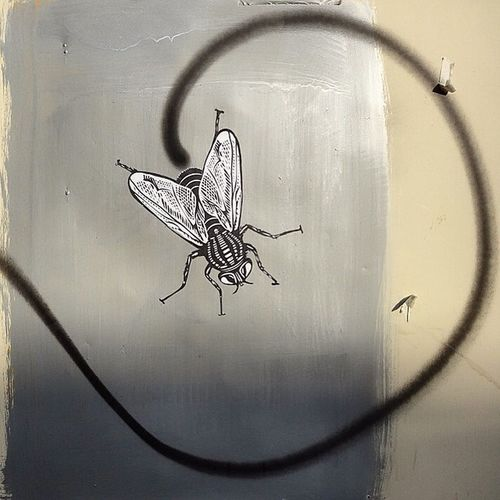 You gotta know when they erase one, another reborn... Ob5cene Graffiti Spray Sprayart Streetart Streets Art Fly Pasteup Wheatglue Wheatpaste Sticker Trail Smellyart Streetart_mashhad