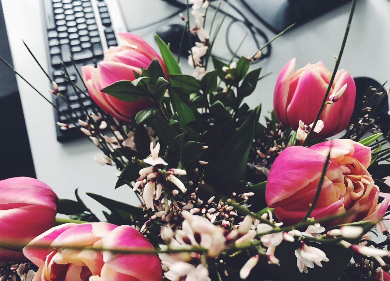 Office flowers Flower Petal Fragility Pink Color Flower Head Tulips Nature Beauty In Nature Freshness Plant Growth Blooming Close-up Indoors  Office Desks From Above Desktop Keyboard Office View Springtime Spring Flowers Millennial Pink