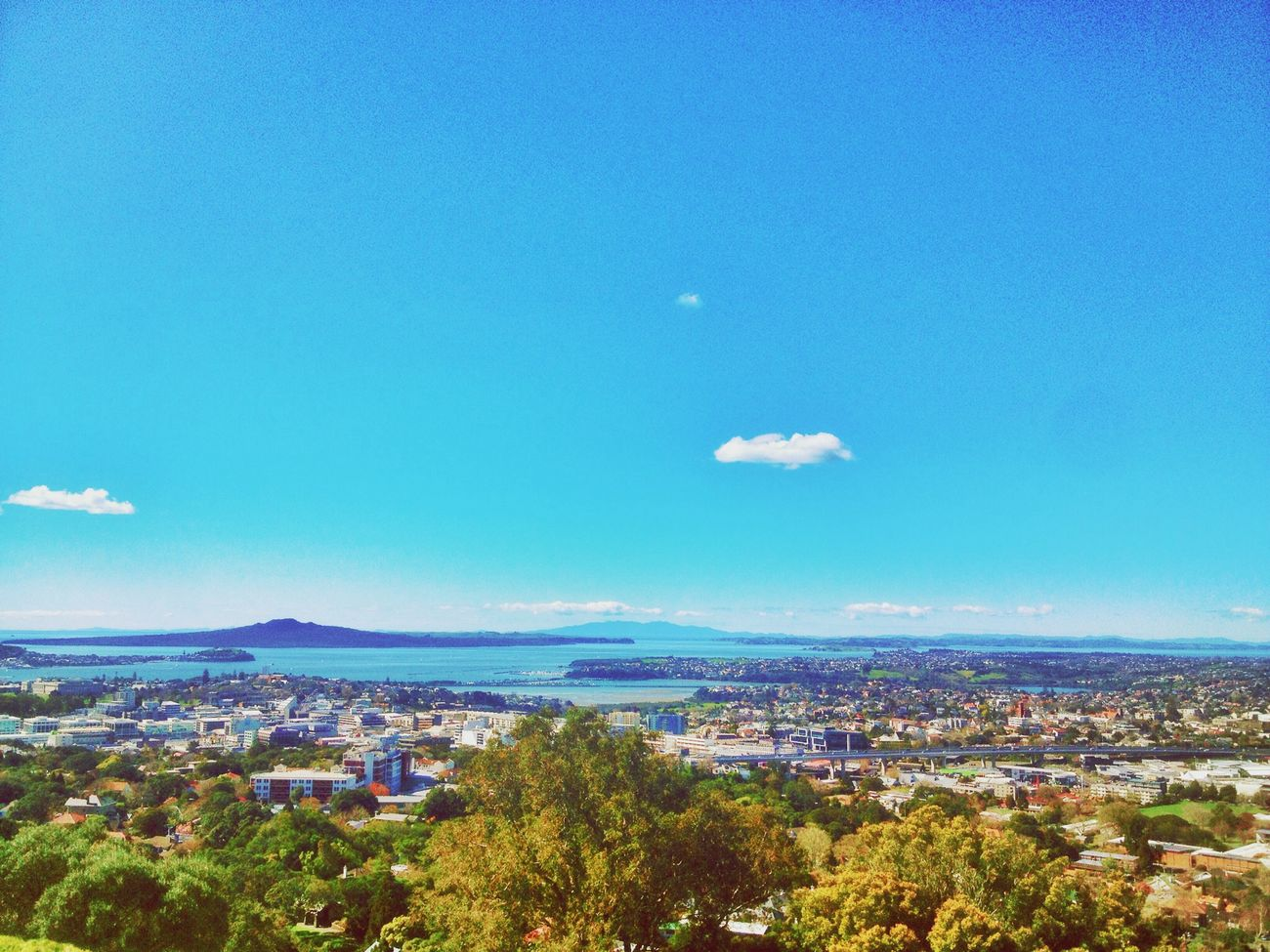 Chilling Auckland Rangitoto Blaze