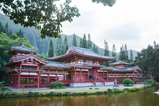 Tree Religion Architecture Place Of Worship Built Structure Building Exterior Pagoda Tradition Sky Spirituality Day Outdoors No People Travel Destinations Scenics Eaves Nature Hawaii Byodo-In Temple Architecture Architecture_collection