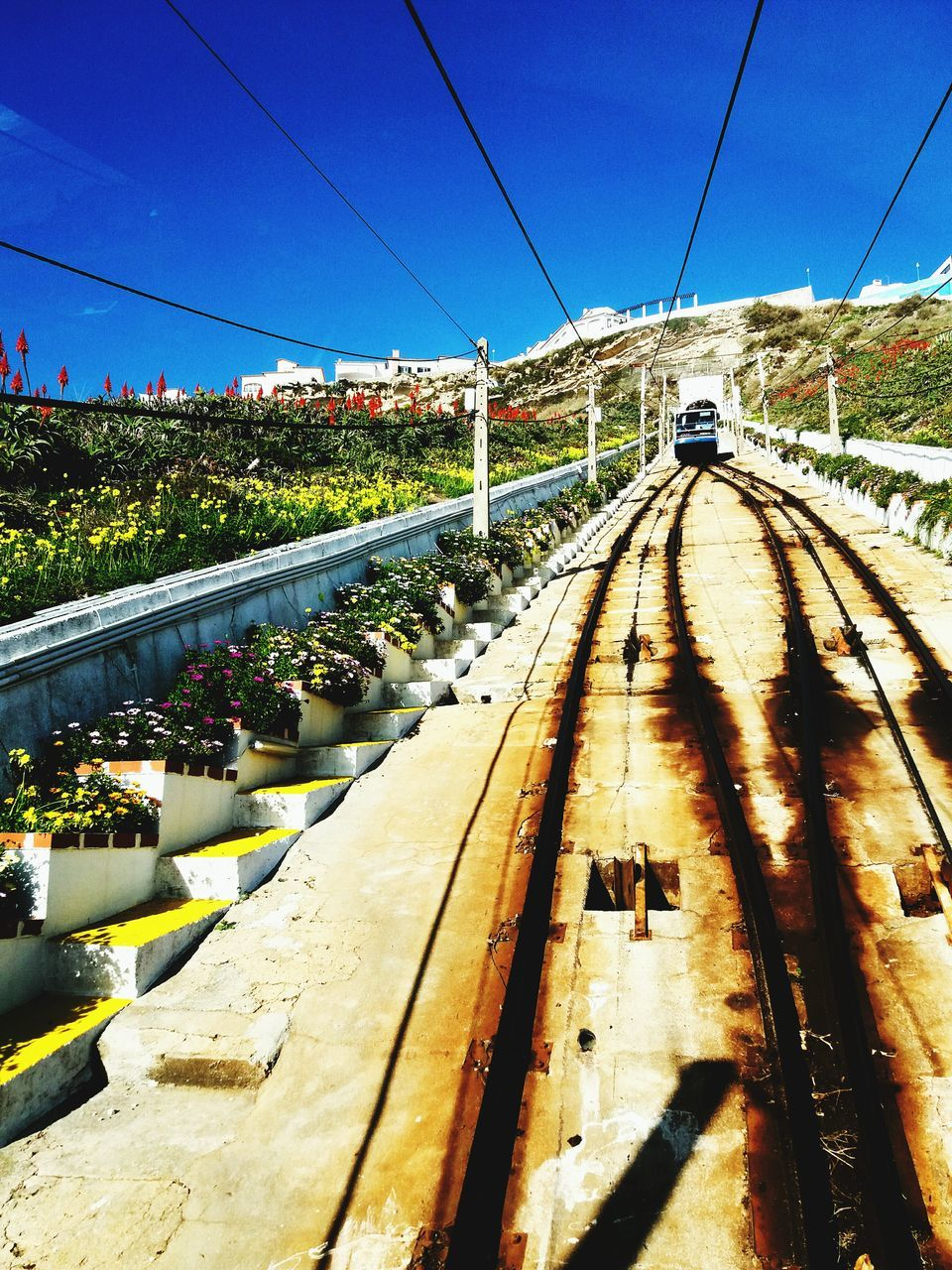 transportation, connection, cable, railroad track, day, rail transportation, outdoors, mode of transport, sky, clear sky, the way forward, no people, bridge - man made structure, tree, electricity pylon, nature