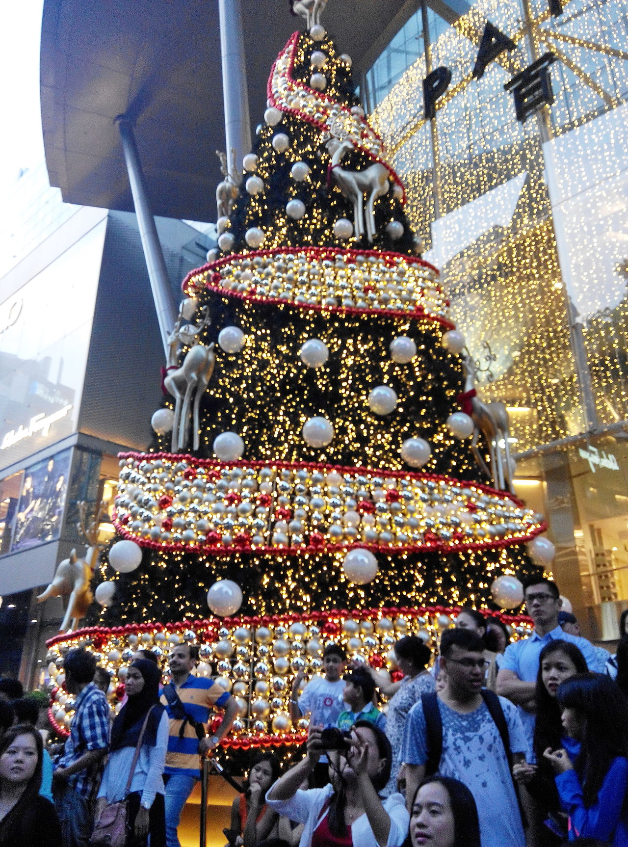 Festive Mood strolls City Life Cityscape Crowded Festive Crowds Festive Season Shopping Shopping Center Shopping Time Feel The Journey Beautifully Organized
