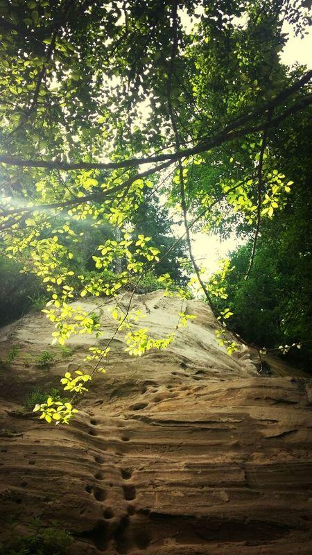 Hills Beautiful Nature Summer