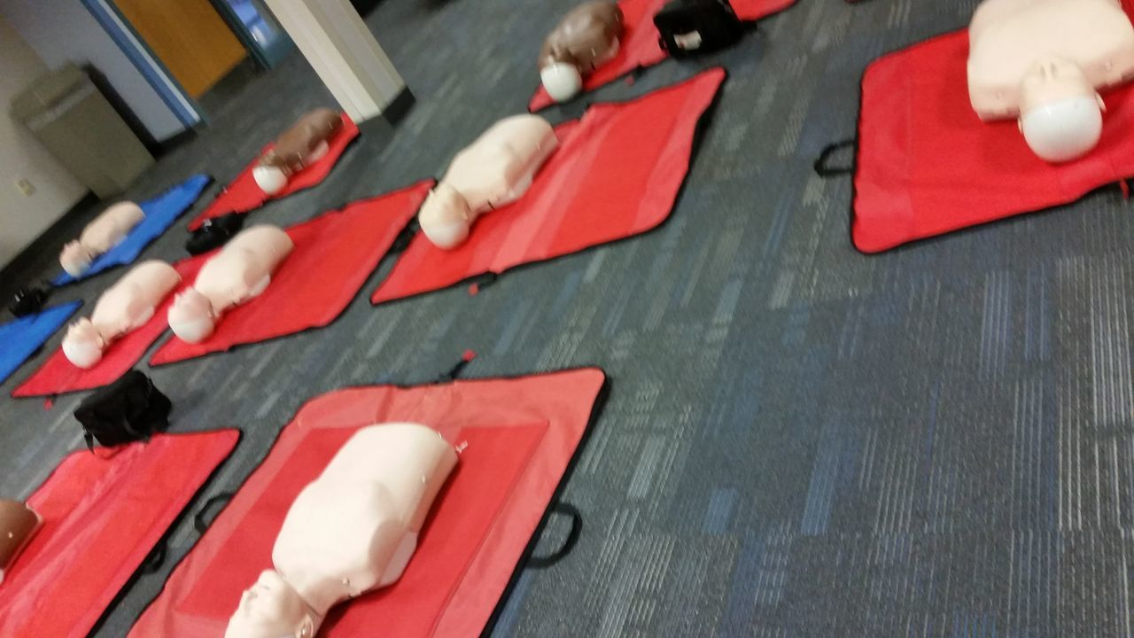 EyeEm Selects CPR  CPR Training High Angle View Red Indoors  People Adult Day Human Body Part Adults Only Torsos CPR Dummies