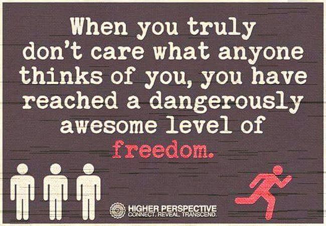 Freedom Sheeple Hey You....Yeah You!!!