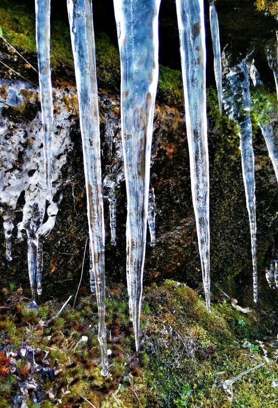IIII Winter Wintertime Ice Cold Cold Days Cold Winter ❄⛄ Extremadurafotos