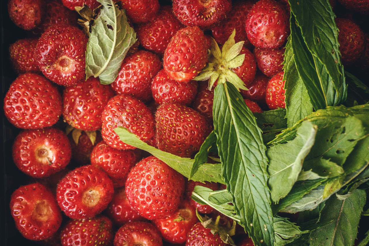Background Close-up Day Food Food And Drink Freshness Fruit Healthy Healthy Eating Leaf Macro Menta No People Outdoors Red Strawberry
