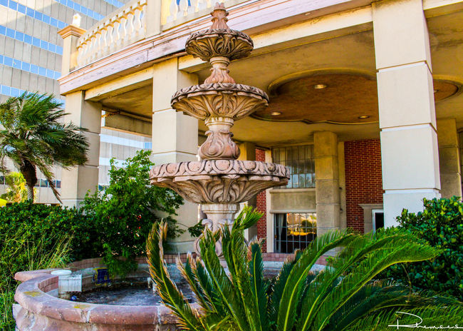 Abandoned Fountain Arch Architectural Column Architecture Building Exterior Built Structure Canon Canonphotography Corpus Christi Creativity Famous Place Fountain Green Color Landscape Nature No People Outdoors Palace Plant Scenery Sculpture Sculptures Statue Steps