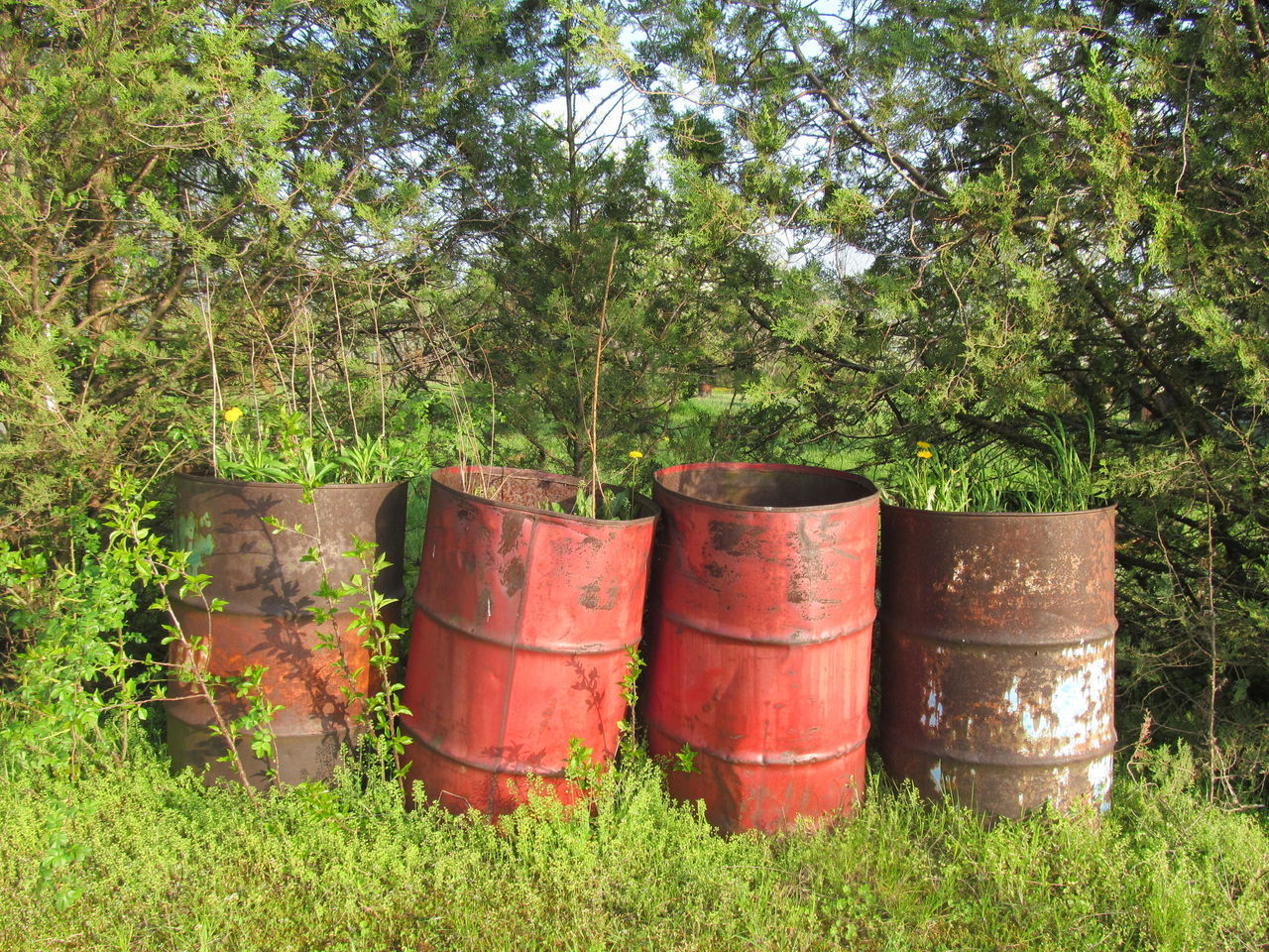 Four Metal Barrels Barrel Cask Four Green Color Keg Metal Barrel Nature Outdoors Red Red Color