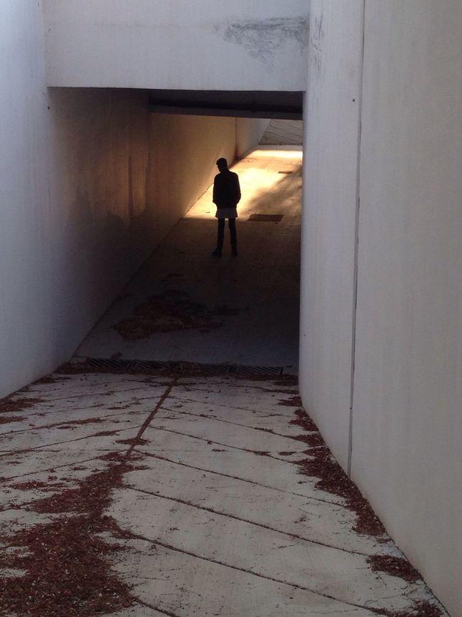 Slope Dead Leaves Boy Back Shot  Light Bridge Tunnel Dark To Light Dark