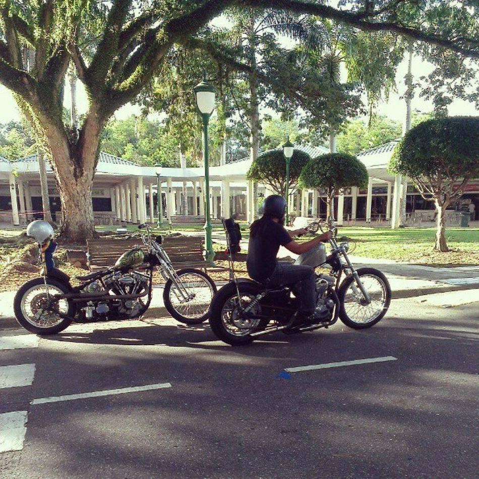 Heres Bubba ! AboutTime Funkyhobo Motorcyclebuddies shutupandride