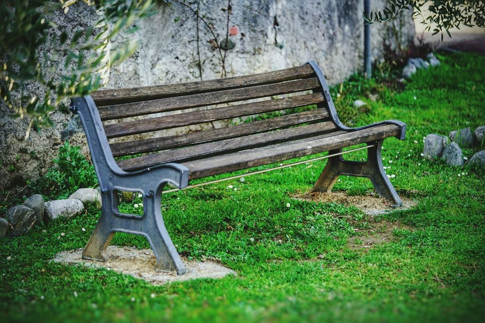 Bench Park - Man Made Space Grass Outdoors No People Chair Plant Nature Green Color Day Tranquility Lago Di Garlate,italy Lago Di Como, Italy Sony A7rm2 Sony α♡Love Sony A7RII Luca Riva Sonyimages Macrophotography Macro_perfection Macro World Panchinavuota Panchina Panchinainnamorata Meditazione