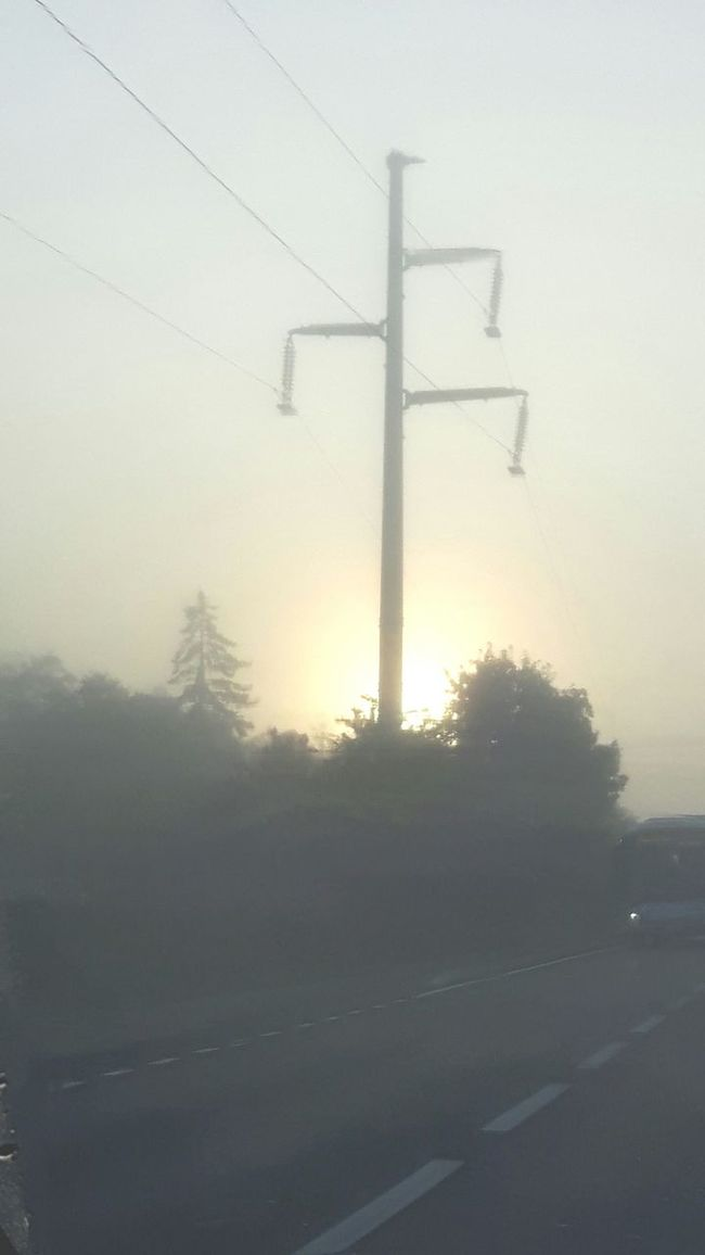 Fog Foggy Morning Fog_collection Electricity Pylon Electric Lines Sunrise Sunrise_Collection Nature Nature_collection Naturelovers Nature Photography On The Way To Work Street Photography EyeEm Nature Lover EyeEm Gallery Eye4photography  EyeEm Best Shots Herblay - Route De Conflans - France