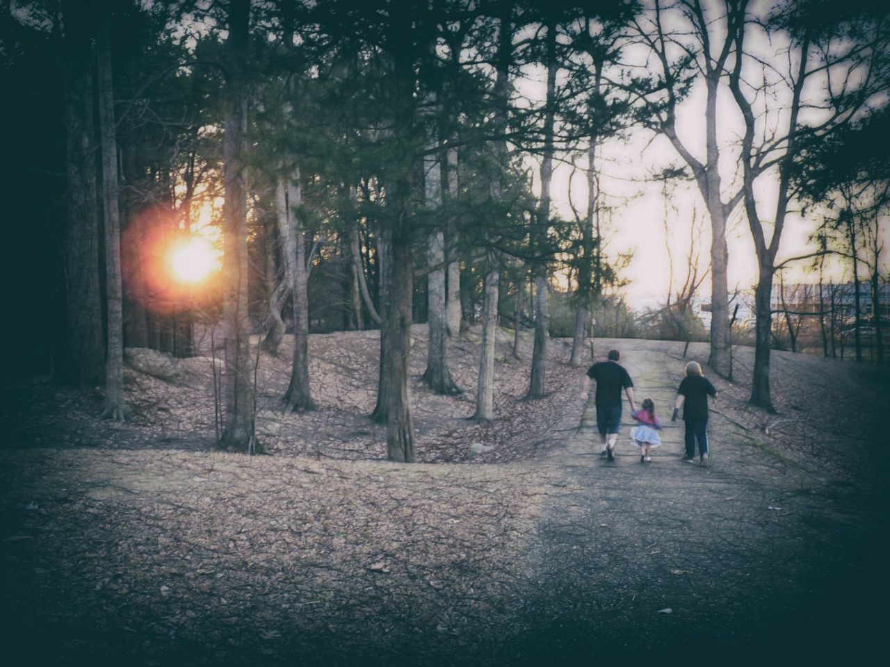 People Walking Outdoors Togetherness Nature Trees Photo Art Path Rear View Filters Sunshine