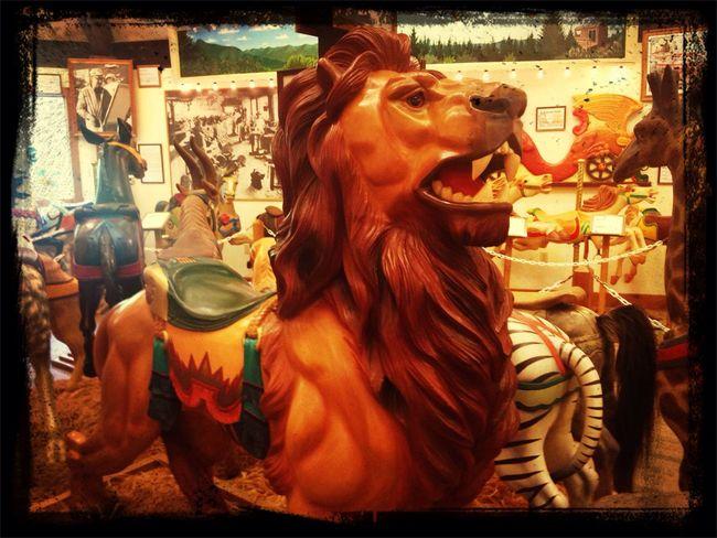 Carousel Museum King Cool