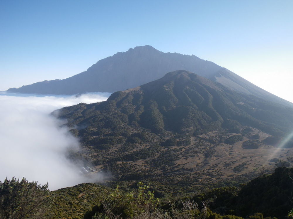 View on Mt. Meru from Little Meru Africa Clouds Clouds And Mountains Fog High Altitude Meru Mountain Mt.meru Summit Tanzania Volcano Volcano Crater