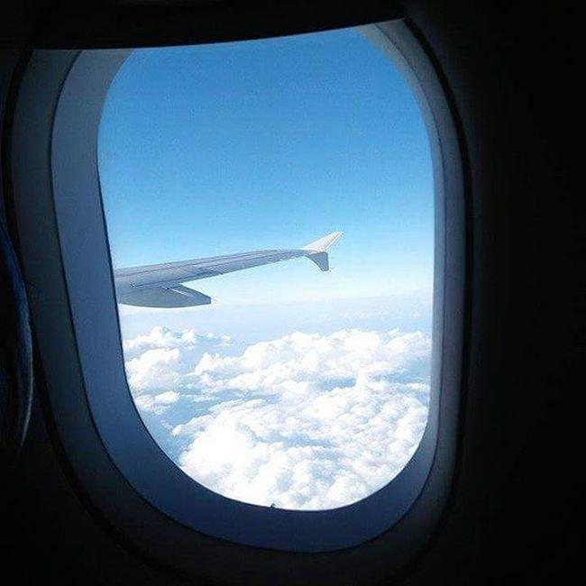 Take flight, baby don't bite VSCO Vscocam Vscophile VSCOPH Vscophilippines Vscorussia Vscobrasil Vscomoscow GrammerPH Wanderlust Wanderlusting Wanderer