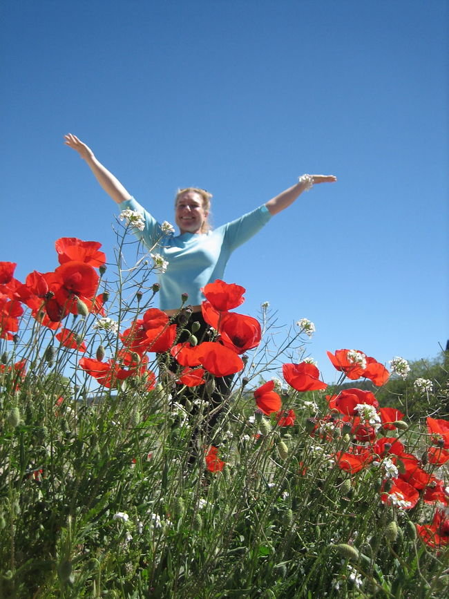 Happy Person Happy Woman Flower Plant Blooming Amapola Red Flower Clear Blue Sky Poppy Flower Poppy Field Flower Field Clear Sky Low Angle View Amapolas мак Petal Freshness Beauty In Nature Fragility Growth Amapolas Rojas Nature Outdoors The Portraitist - 2017 EyeEm Awards