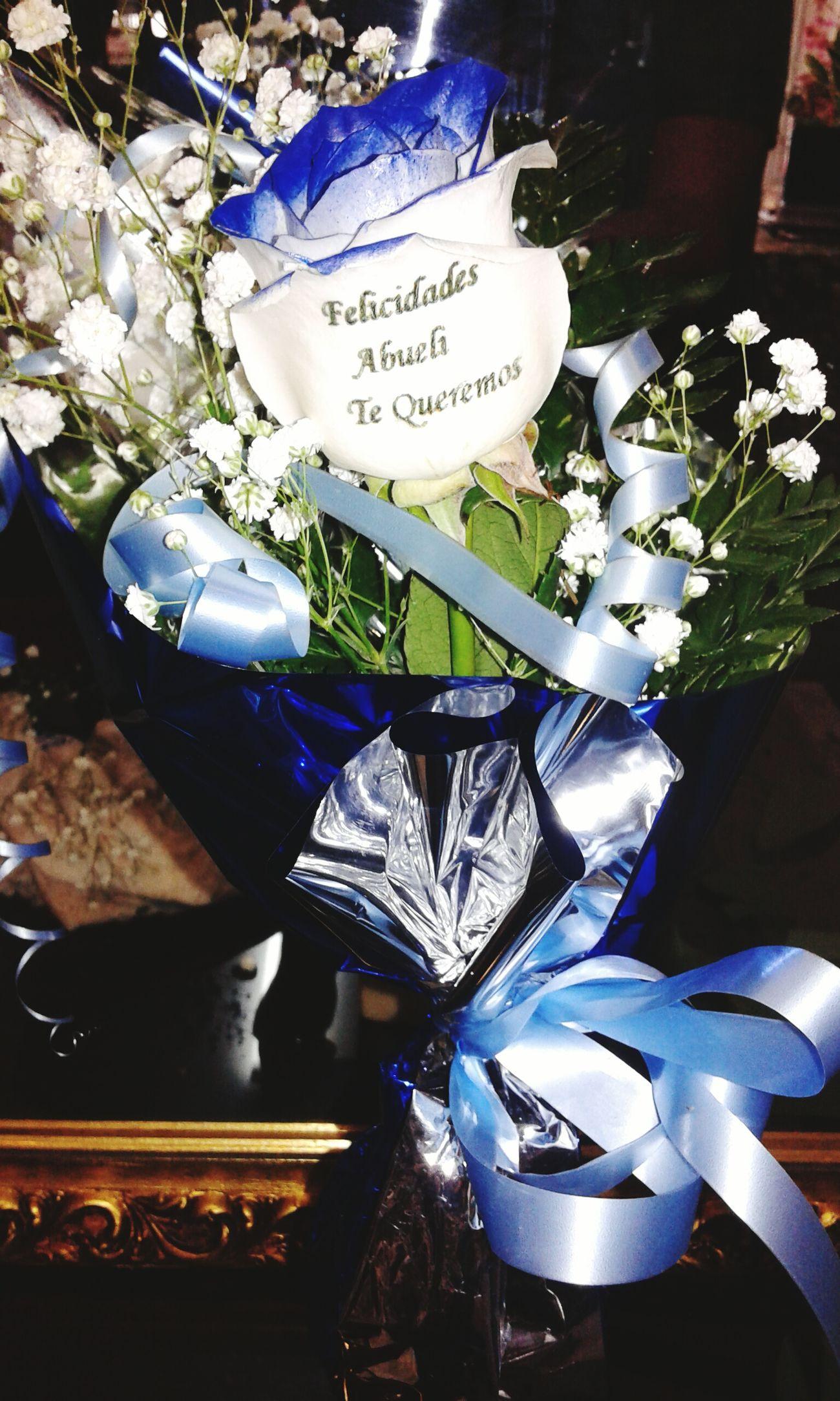 Rosa con filos de los petalos azules y un mensaje tatuado en el petalo, es una rosa natural al 100%, una manera original y exclusiva de sorprender a esa persona especial. Regalo Original Floristerias Flowers Blue Rose Rosas Azules Regalos Originales Regalo De Aniversario Regalos Rosaazul Rosas Bonitas❤️🌹
