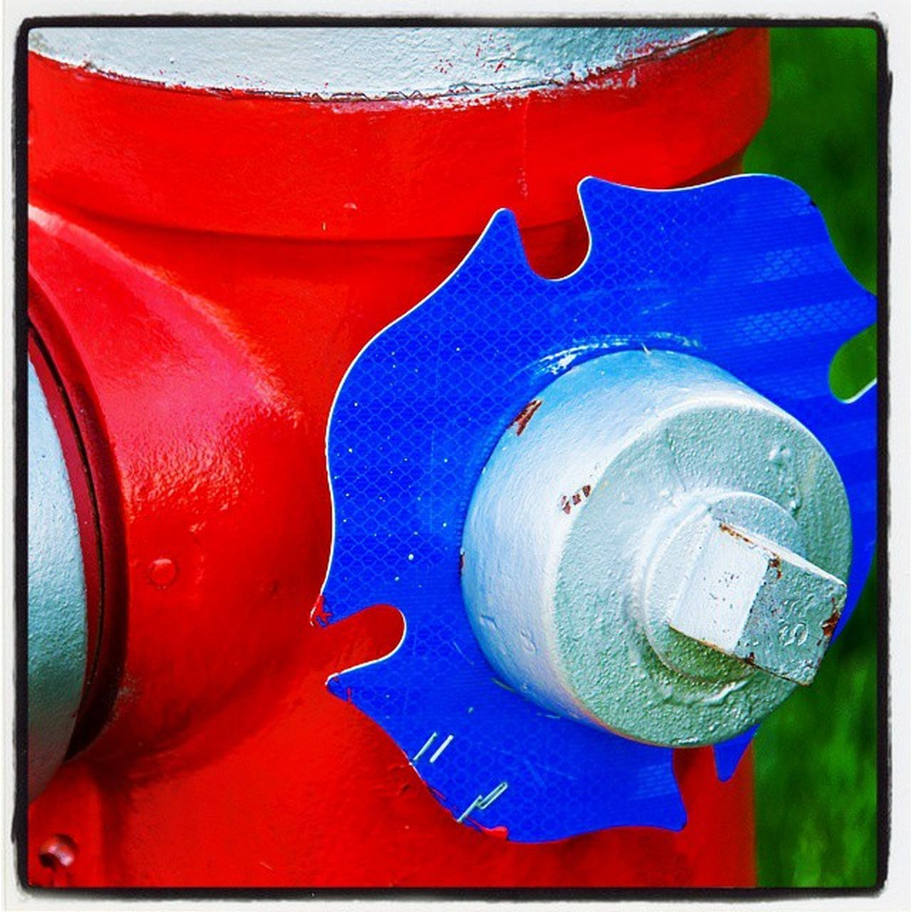close-up, red, no people, outdoors, day, blue