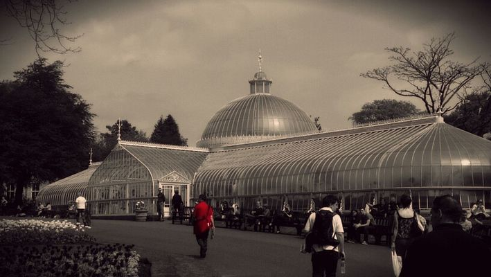 Botanical Gardens in Glasgow by Steffan
