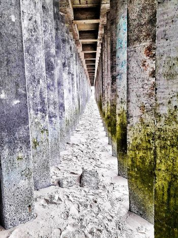 No People Indoors  Day Architecture Nature Water Horizon Over Water Leaf Indoors  The Way Forward Sky Sea Sand Groyne