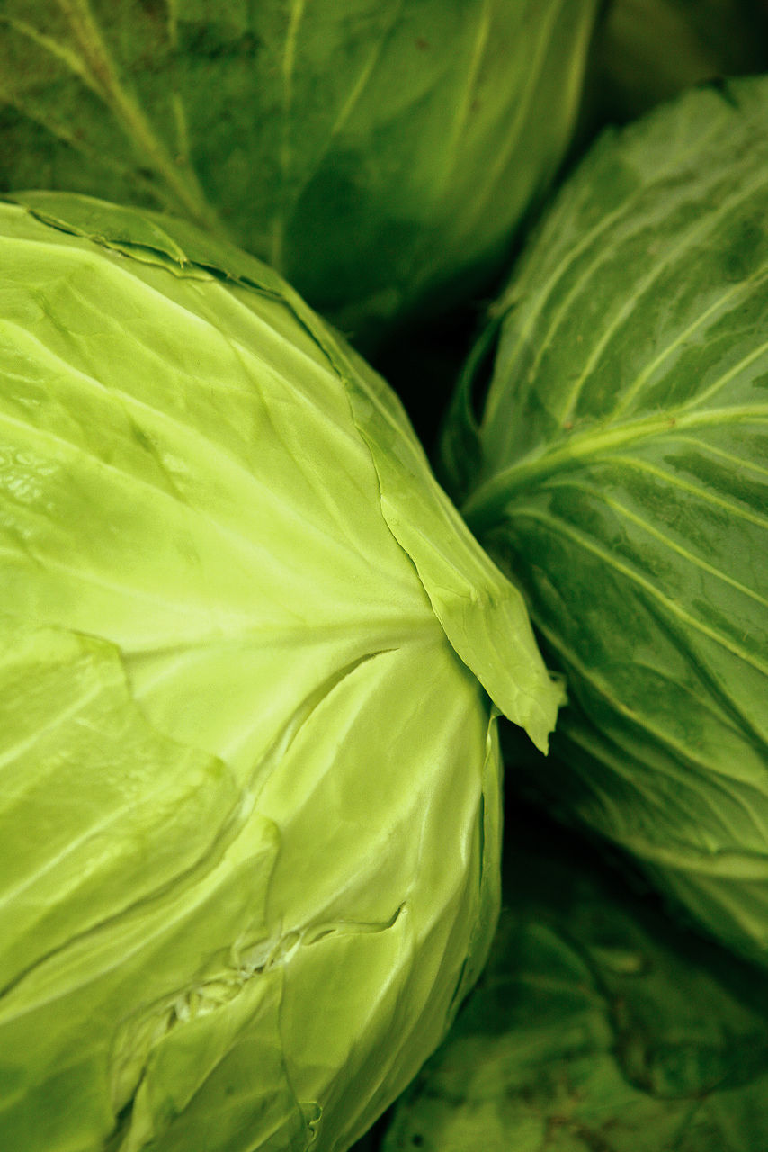 green color, leaf, close-up, no people, freshness, growth, plant, day, beauty in nature, outdoors, nature, food, fragility