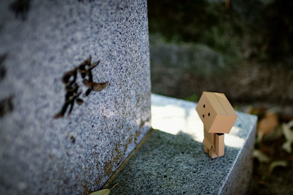 殿? Danbo EyeEm Gallery Cheese! Shallow Focus Japanese Shrine Stone