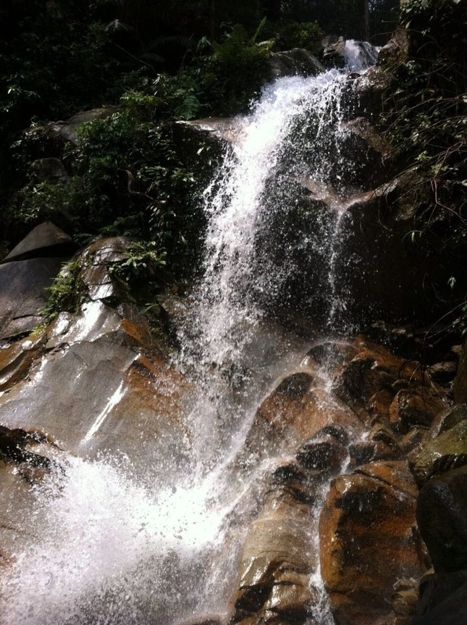 waterfall, water, motion, no people, beauty in nature, nature, scenics, outdoors, day, forest, tree, freshness
