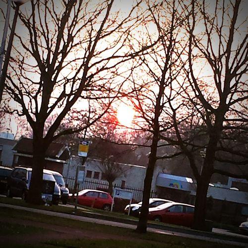 Sunshine is love Sunshine Love Warmth