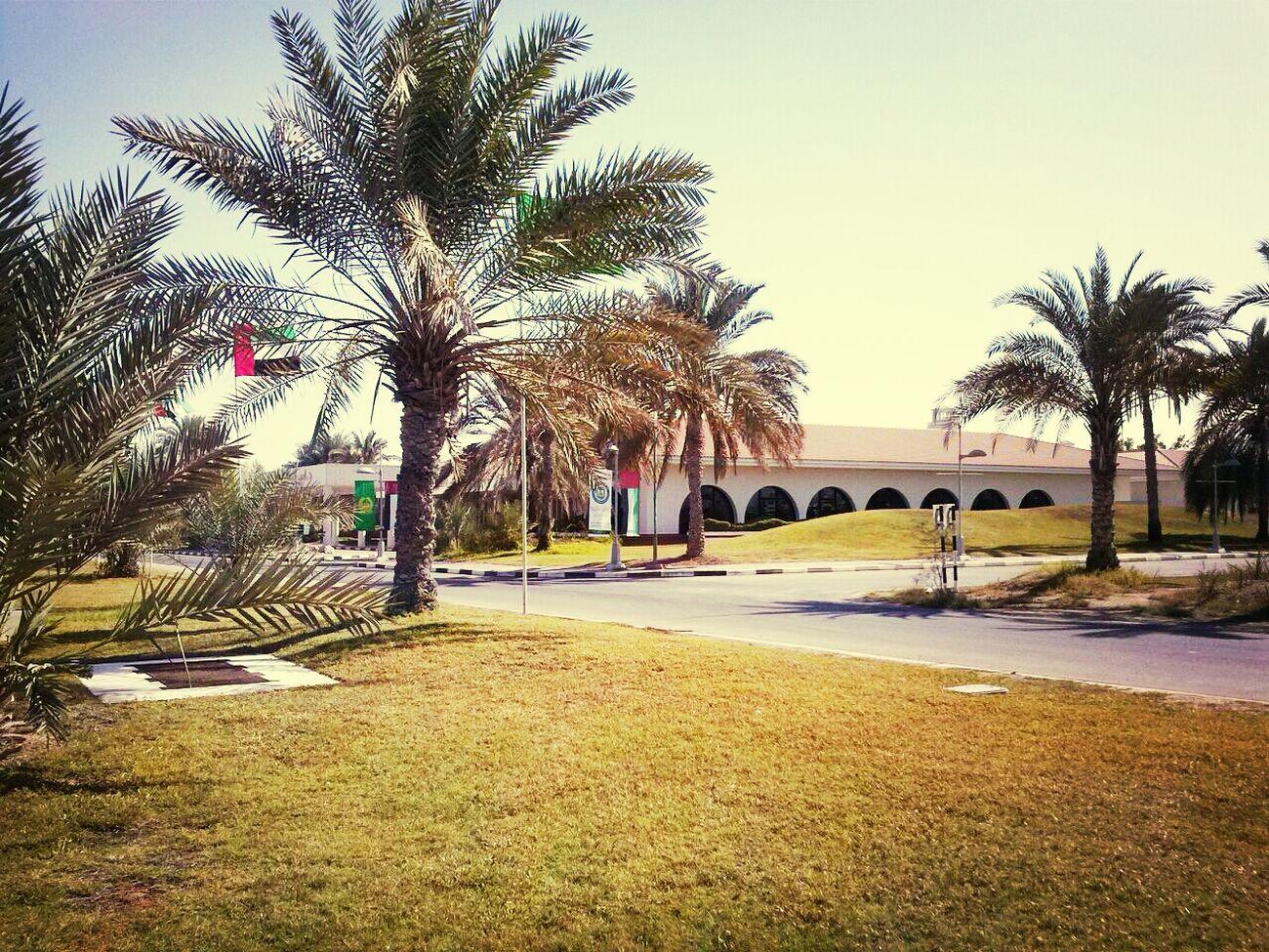 UAE , Dubai PoliceHQ Visit Classified pic