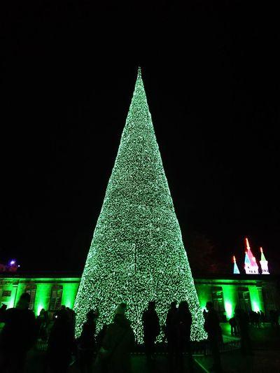 Longleat Wiltshire Festival of lights ....