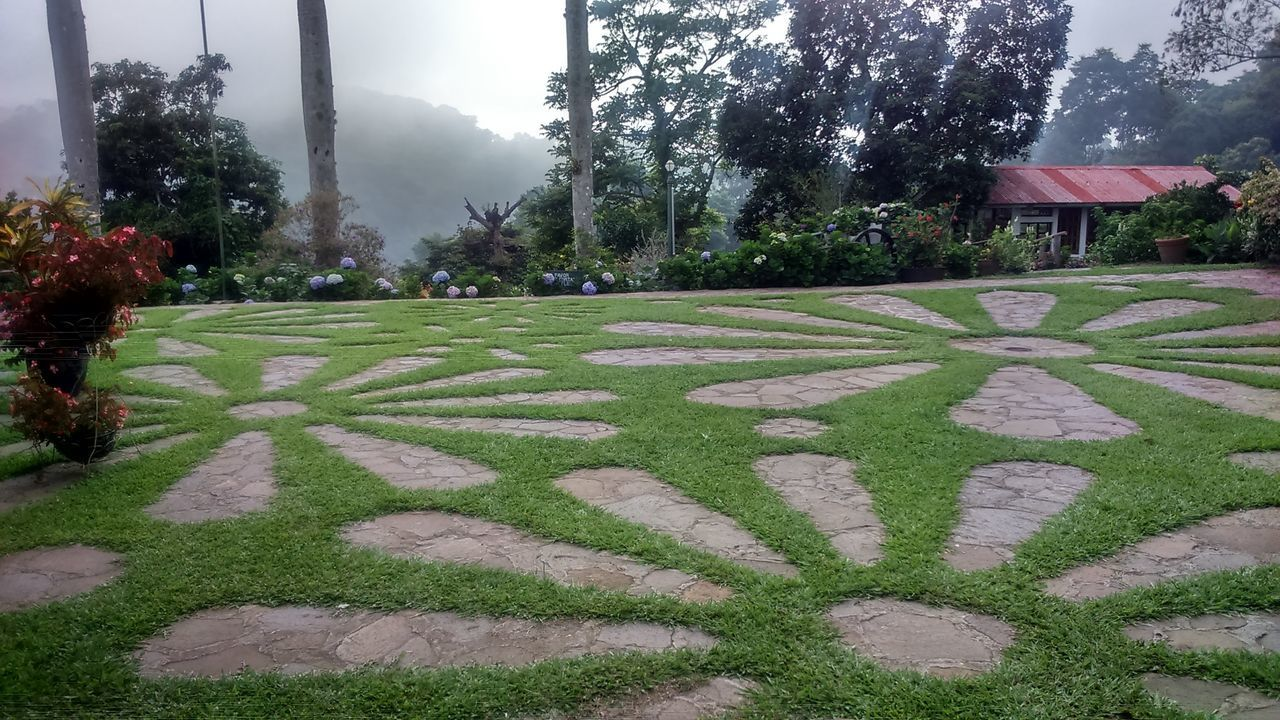 Architecture Beauty In Nature Day Grass Green Color Growth Landscape Nature Neblina Nebline No People Outdoors Park - Man Made Space Scenics Sky Tranquility Tree